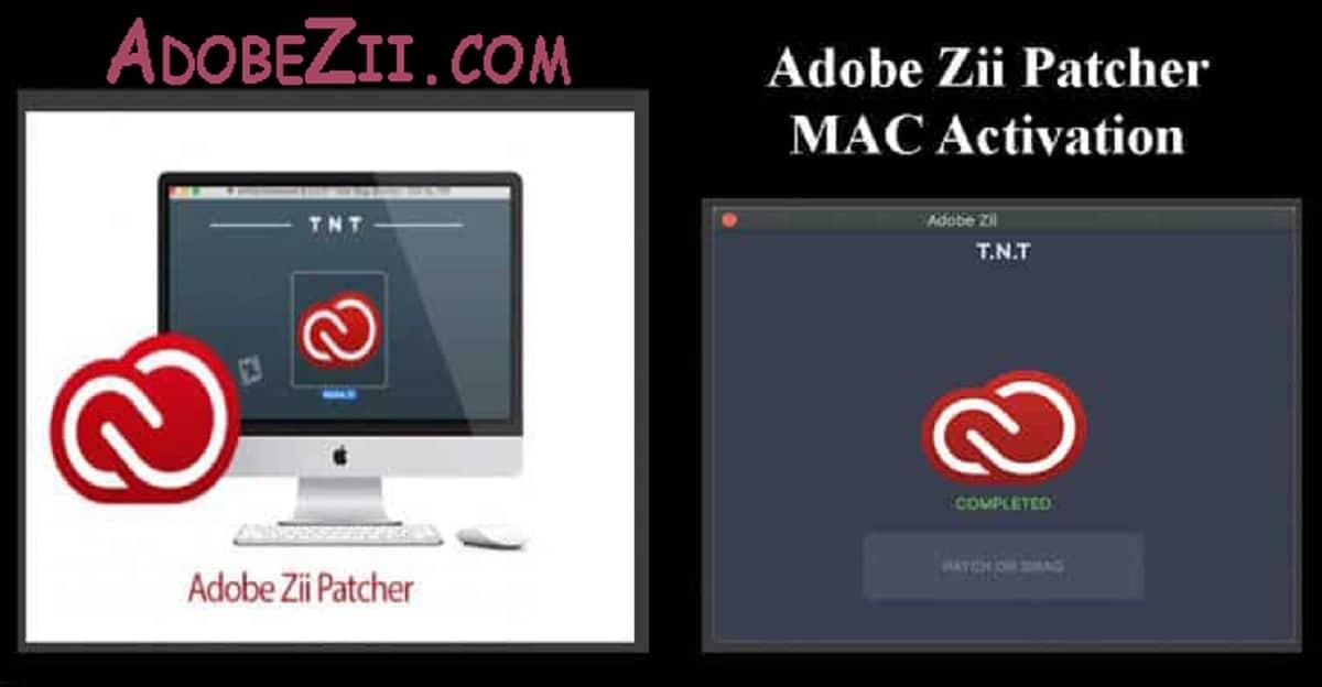 Advertencias antes de usar Adobe Zii