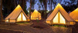 Cuál es la mejor app para encontrar campings