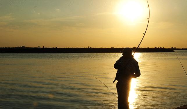 Aplicaciones para pescar
