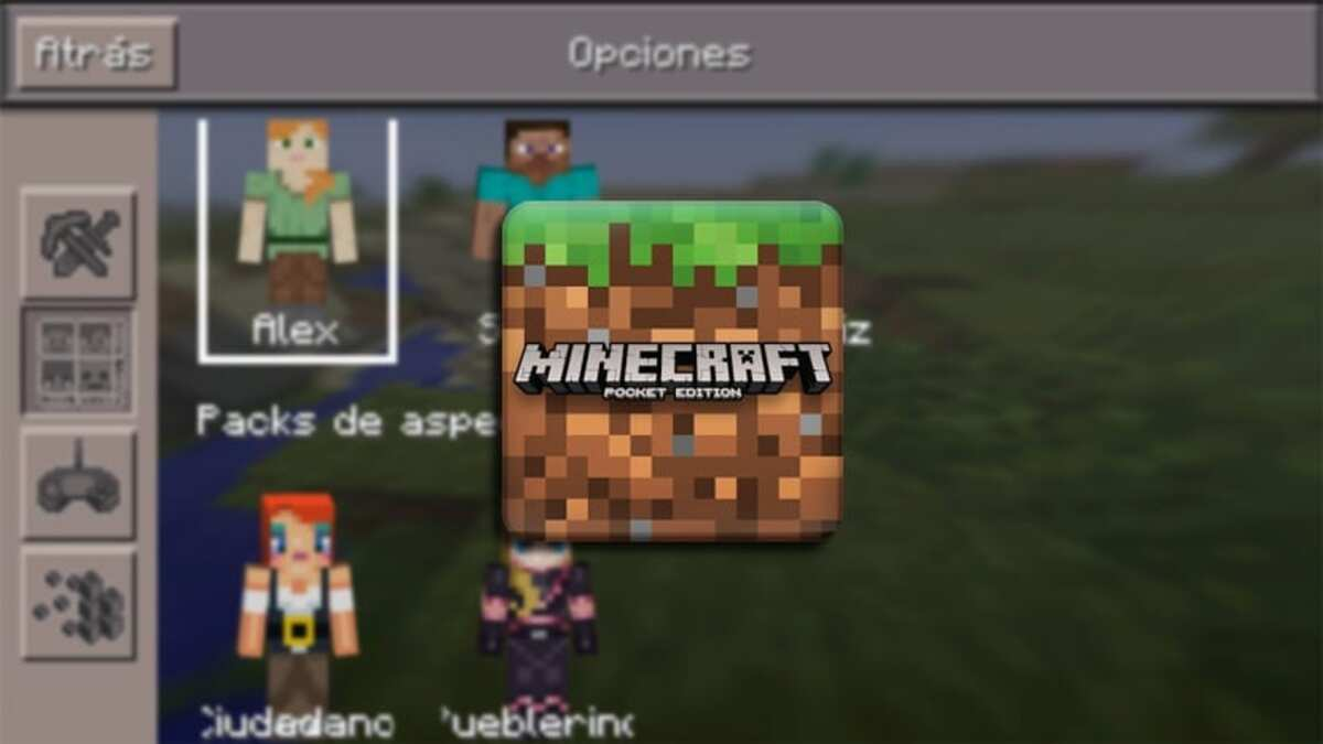Skins Minecraft Pocket Android
