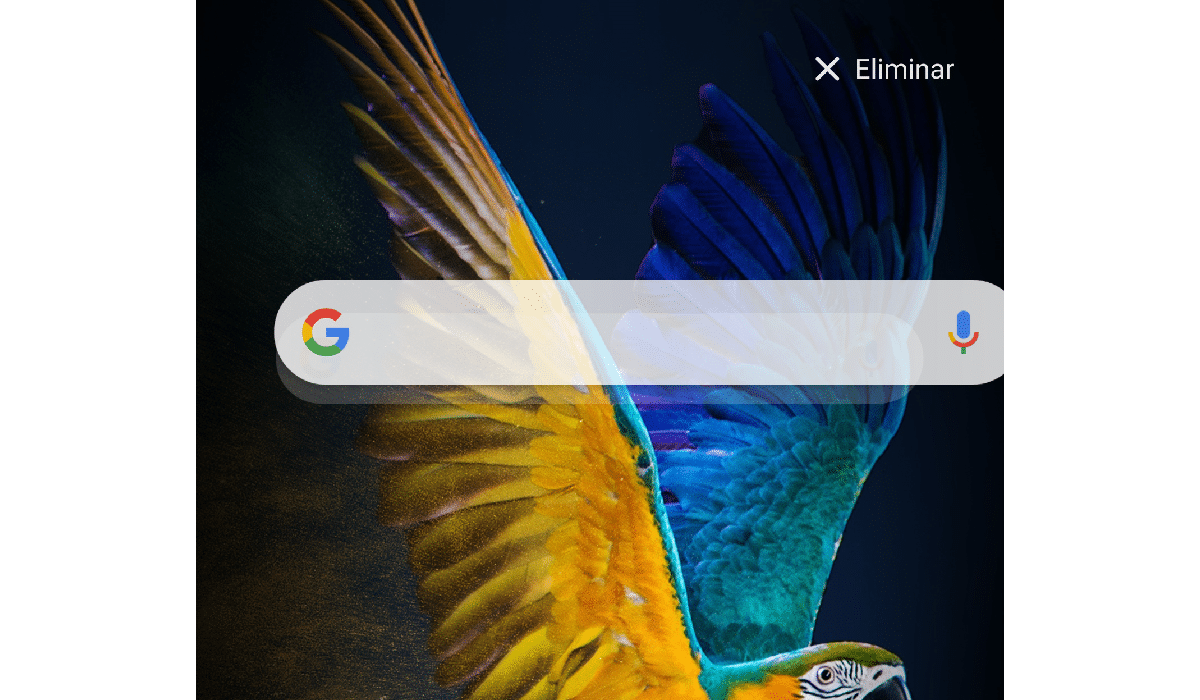 Eliminar widget google